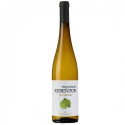 Pequenos Rebentos Alvarinho 2016 White Wine