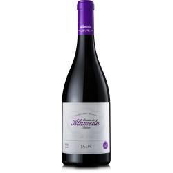 Quinta da Alameda Jaen 2013 Red Wine