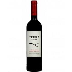 Terra d'Alter 2009 Red Wine