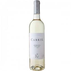 Cabril 2015 White Wine