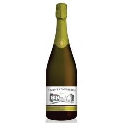 Quinta d'Aguieira Bruto 2013 Sparkling White Wine