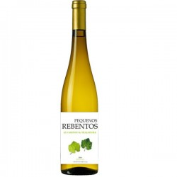 Pequenos Rebentos Alvarinho & Trajadura 2016 White Wine
