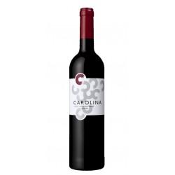 Vila Nova Reserva 2015 White Wine