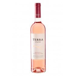Plansel Selecta Reserva 2013 White Wine