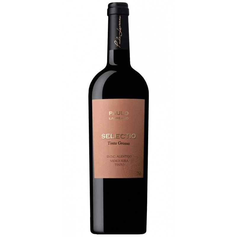 Casa Ermelinda Freitas Sauvignon Blanc & Verdelho 2016 Weißwein