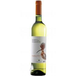 Procura 2013 Red Wine