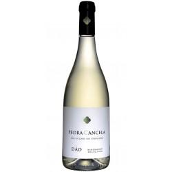 Vinha do Pastor Reserva 2015 Red Wine