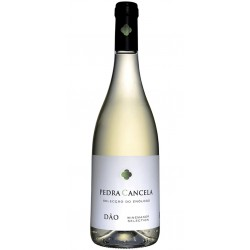 Vinha do Pastor Reserva 2015 Red Wine