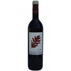 Santa Cristina 2017 Rosé Wine