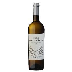 Monólogo Sauvignon Blanc 2017 White Wine