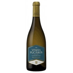Indie Xisto Red Wine
