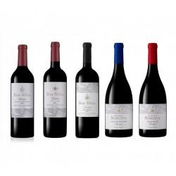 Aneto Weißwein