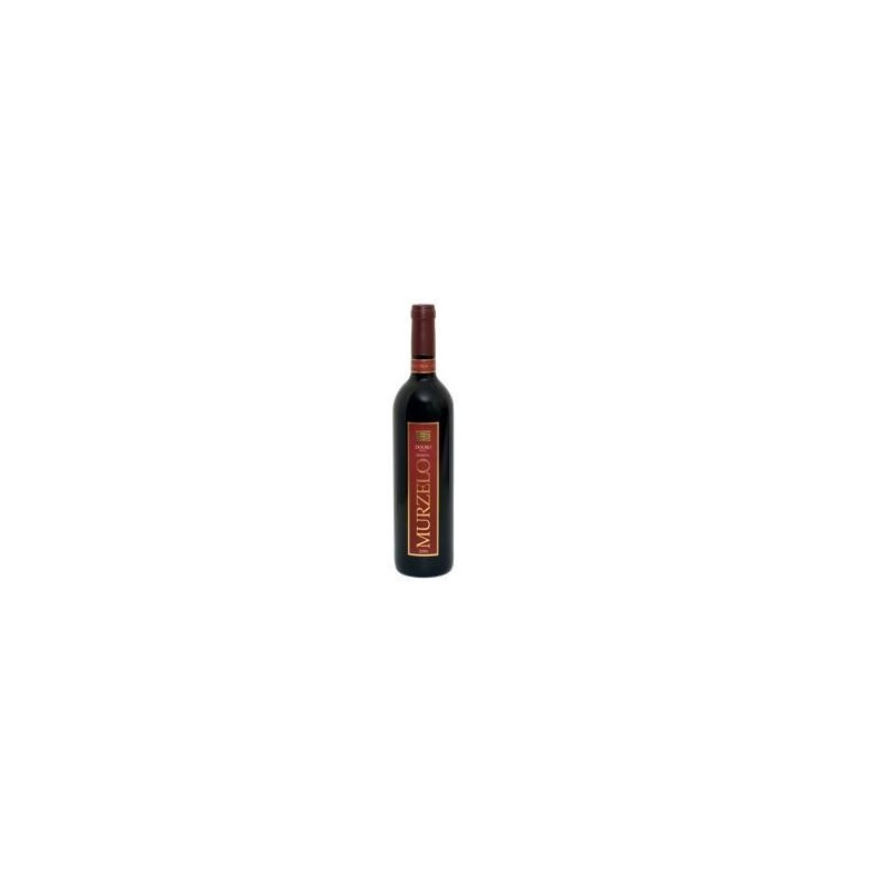 Murzelo Reserva 2008 Red Wine