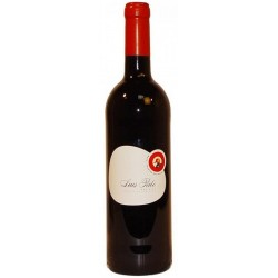Luis Pato Baga and Touriga 2013 Red Wine