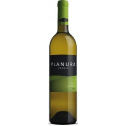 Planura 2010 White Wine