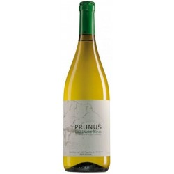 Prunus 2015 White Wine