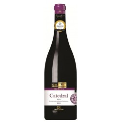 Catedral Reserva 2013 Red Wine