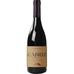 Cabriz Touriga Nacional 2013 Red Wine