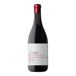 Cabriz Reserva 25 Years Old 2011 Red Wine
