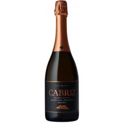 Cabriz Medium Dry Vino Bianco Frizzante