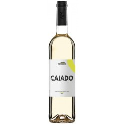 Caiado 2016 White Wine