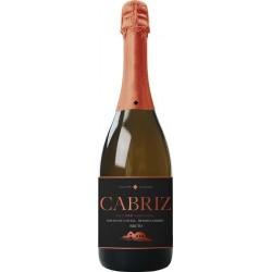 Cabriz Brut 2013 Vino Blanco Espumoso