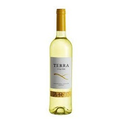 Terra D'Alter Arinto 2012 White Wine