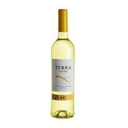 Terra D'Alter Arinto 2012 White Wine