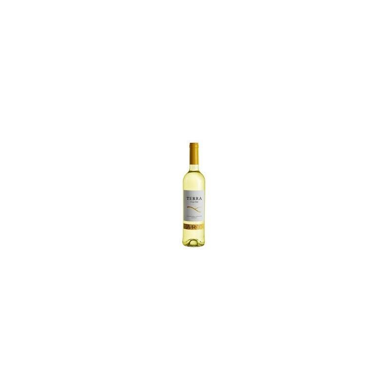 Vinho BrancoTerra D'Alter Arinto 2011
